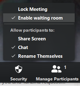 Security button within Zoom