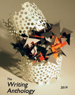 2019 Anthology Cover